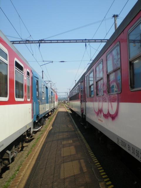 20110711-043443.jpg